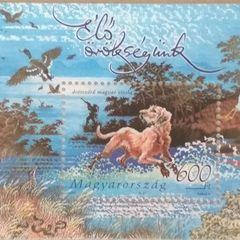 Drótszőrű magyar vizsla - bélyeg miniblokk