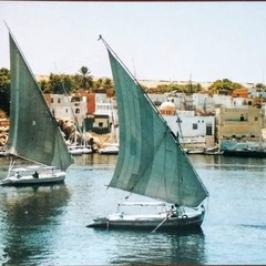 Felucca Ships on the Nile - Postcard