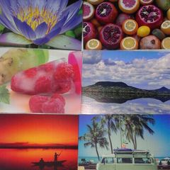 Summer - 6 pcs Postcard Bundle