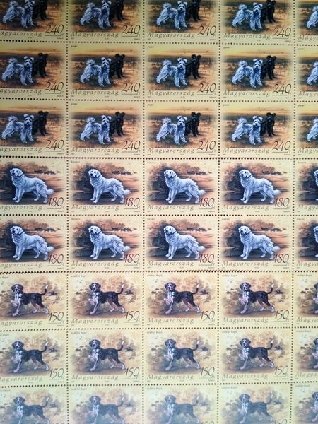 Hungarian dogs stamps hstamp52a