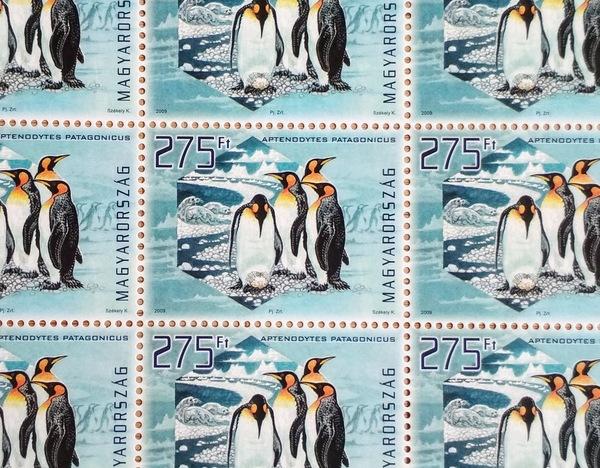 Penguin stamps postcardsisters hstamp53