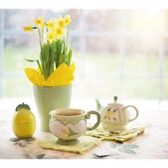 Csendélet nárciszokkal - tavaszi képeslap
