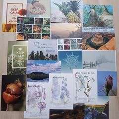 Nature - 20 pcs Postcards Bundle