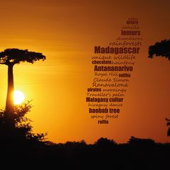 Greetings from Madagascar - Word Cloud Postcard