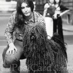 Puli (1975) Postcard