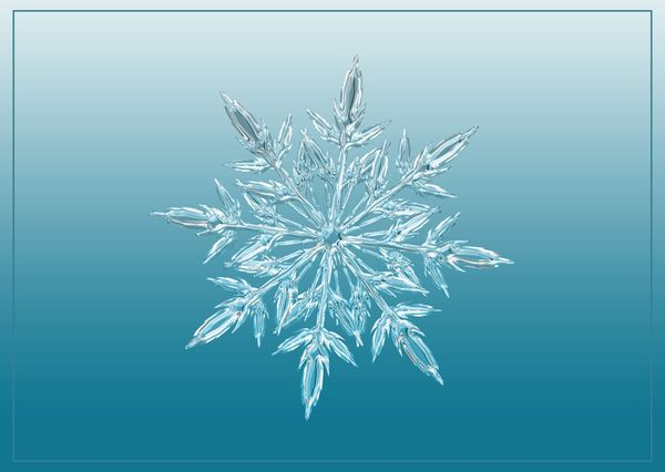 Snowflake postcard cm106 01c
