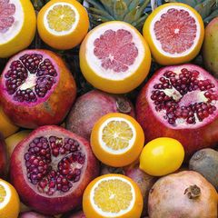 Früchte Postkarte