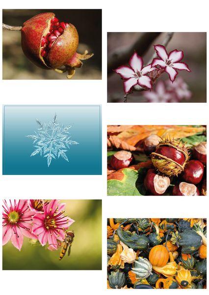 Nature postcards 01c