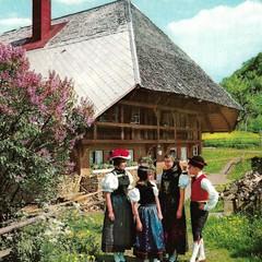 Im Schwarzwald old vintage postcard