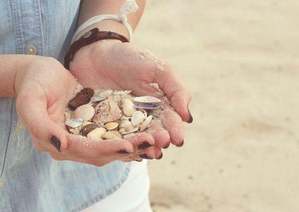 Seashells postcardsisters nt105c
