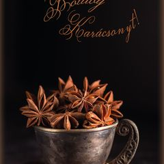 """""""Boldog Karácsonyt"""" Postcard"""