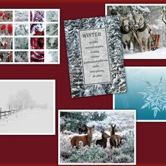 Winter - 6 pcs Postcards Bundle