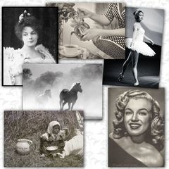 Black and White - 6 pcs Postcards Bundle