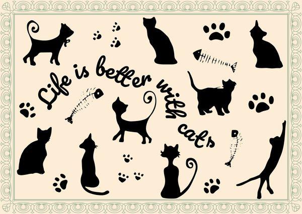Cats quote postcard il108c