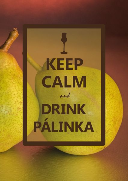 Keep calm palinka postcard ke106c
