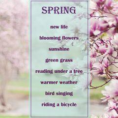 Tavasz Képeslap