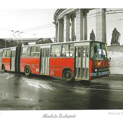 Roter Oberleitungsbus Postkarte