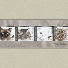 Cats - Hungarian Stamp Sheet