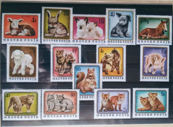 Baby animals thematic stamp collection them02c