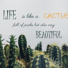 Cactus - Quote Postcard