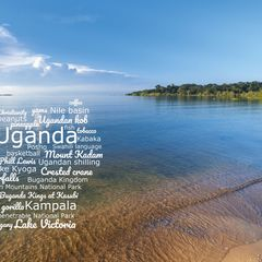 Greetings from Uganda - Wordcloud Postcard